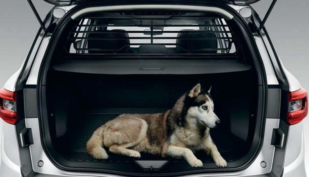 Renault Koleos II - Separation grille (Renault Original)